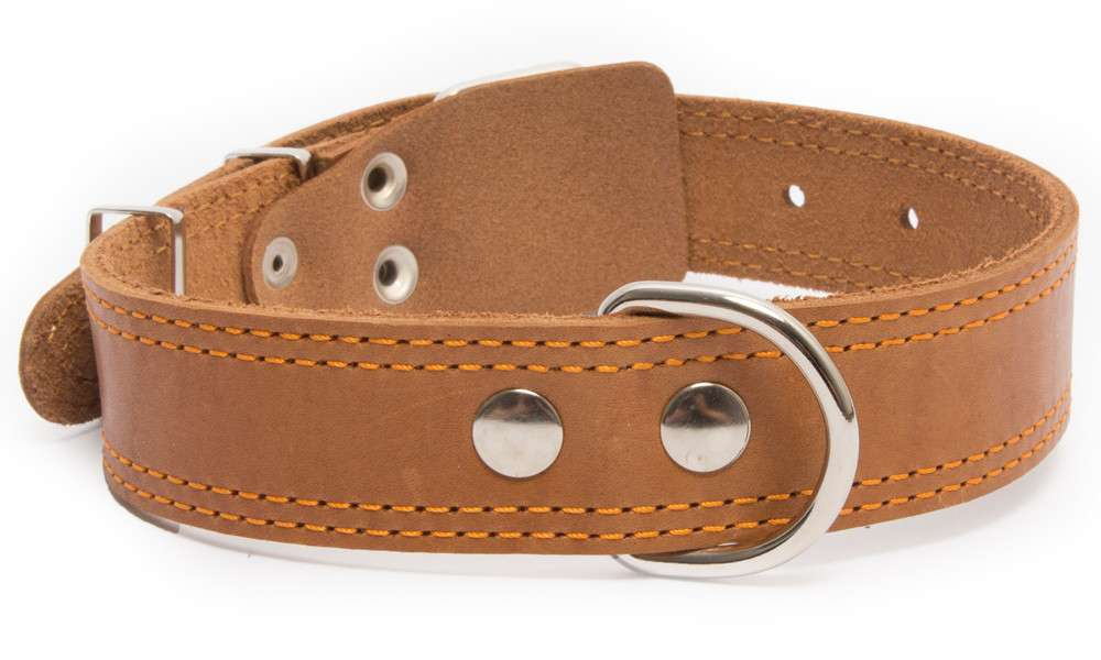 Bark&Bones Collar de Cuero con Parte Trasera de Tejido con Dobles Bordes Cosidos Naranja claro 54-66x3.5 cm