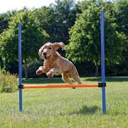 Trixie Agility Hurdle  handle