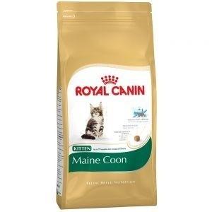 Royal Canin Feline Breed Nutrition Kitten Maine Coon 10 kg, 4 kg, 400 g
