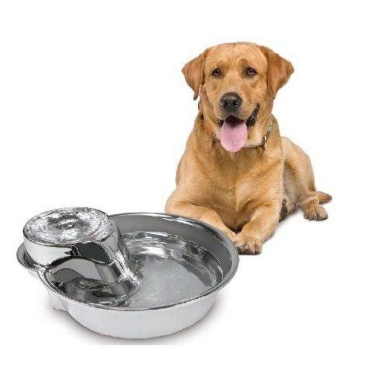 Pioneer Pet Big Max Chorro Potable 3.8 l