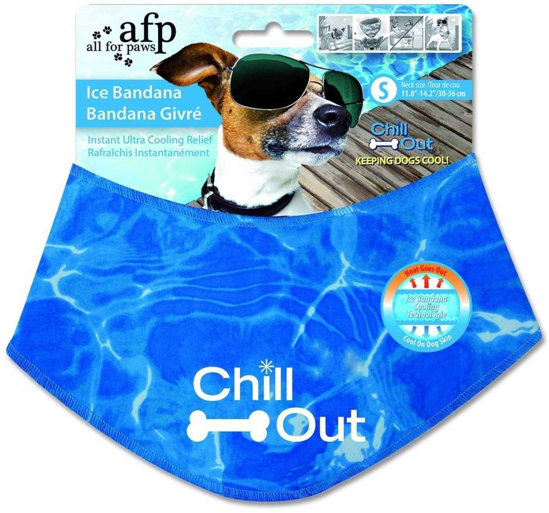 All for Paws Chill Out Ice Bandana 847922080112 erfarenheter