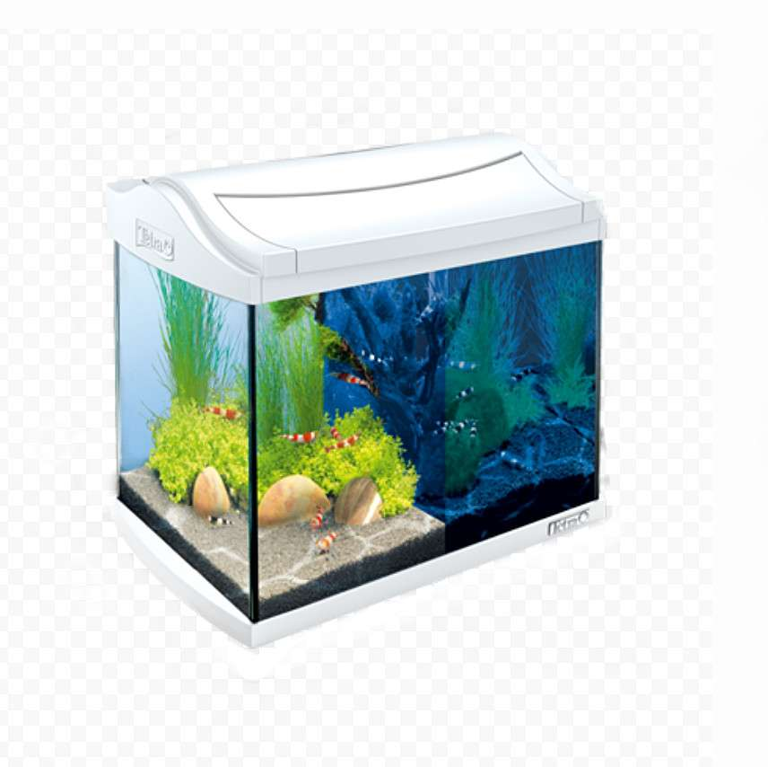 Tetra AquaArt LED Aquarium Garnalen  Wit 20 l