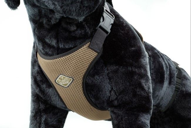 Europet-Bernina D&D Dog Pettorina All Season 4047059424193 opinioni