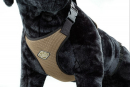 Europet-Bernina D&D Dog Harness All Season L L