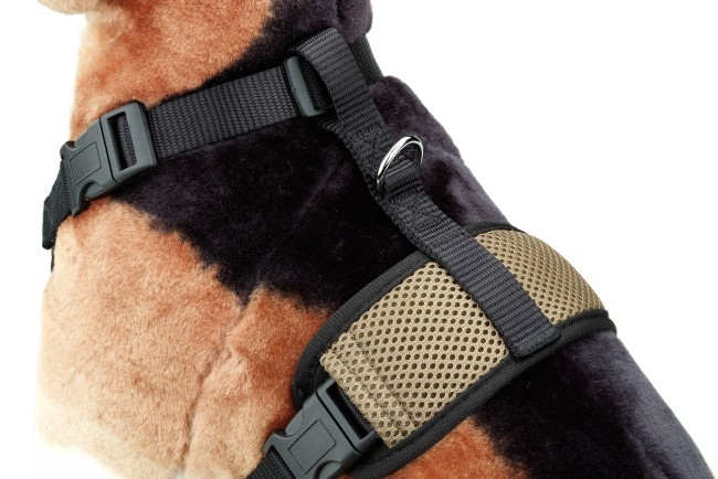 EBI D&D Dog Harness All Season Brun clair 4047059424193 avis