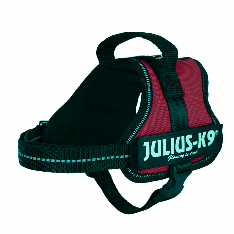 Julius K9 Powertuigje, Mini-Mini/S  Bordeaux S