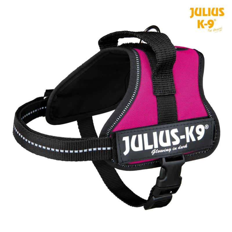 Julius K9 Powersele Mini Mini S  Fuchsia S