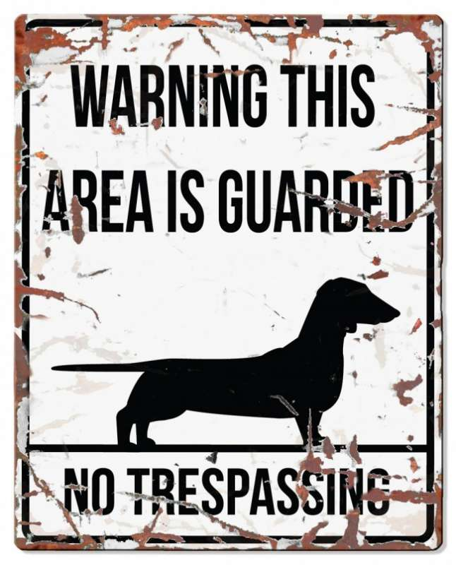 Europet-Bernina D&D Homecollection Warning Sign - Square Dachshund White - English Version Mini Chihuahua  4047059434406 anmeldelser