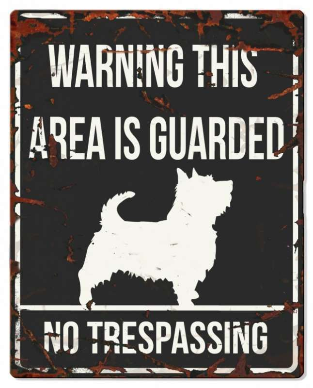 Europet-Bernina D&D Homecollection Warning Sign - Square Terrier Black - English Version Mini Chihuahua  4047059434406 anmeldelser