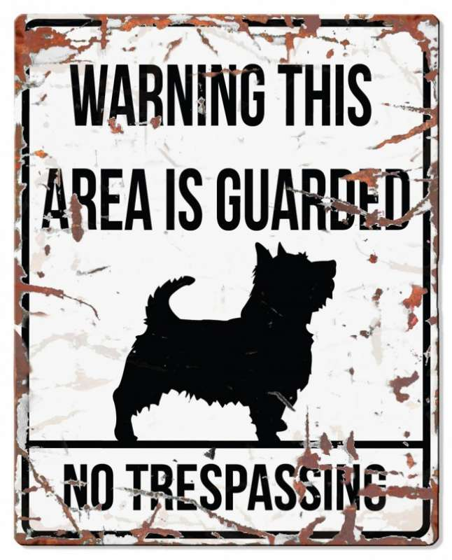 Europet-Bernina D&D Homecollection Warning Sign - Square Terrier White - English Version  Hvid Terrier, square