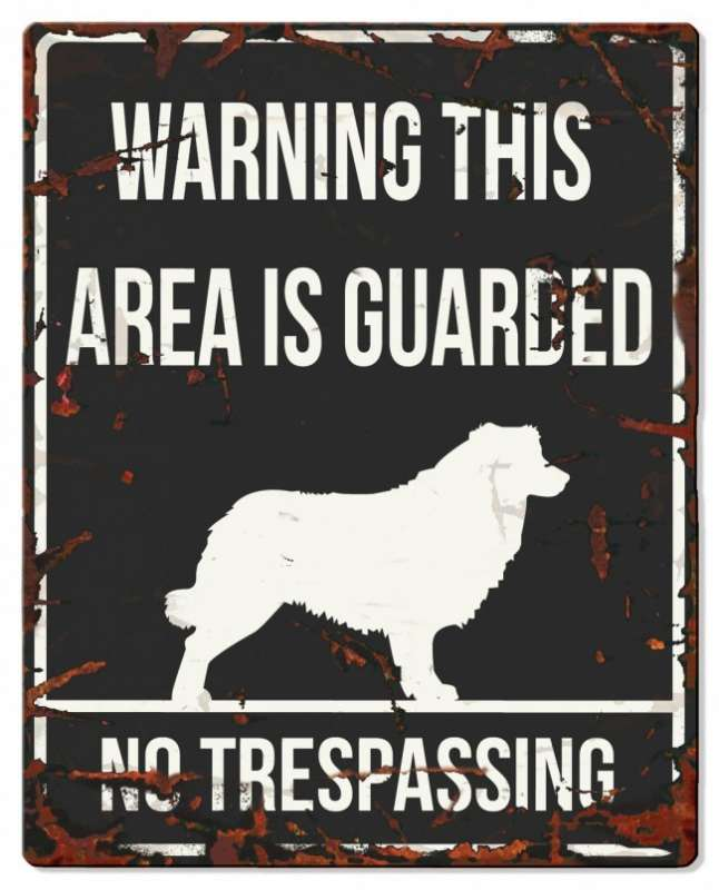 Europet-Bernina D&D Homecollection Warning Sign - Square Collie Black - English Version  Sort Collie, square