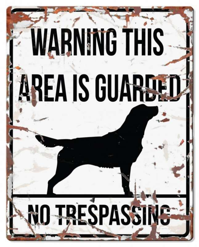 Europet-Bernina D&D Homecollection Warning Sign - Square Retriever White - English Version Mini Chihuahua  4047059434406 anmeldelser