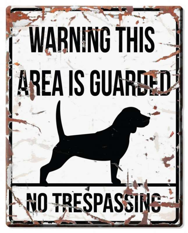 Europet-Bernina D&D Homecollection Warning Sign - Square Beagle White - English Version Mini Chihuahua