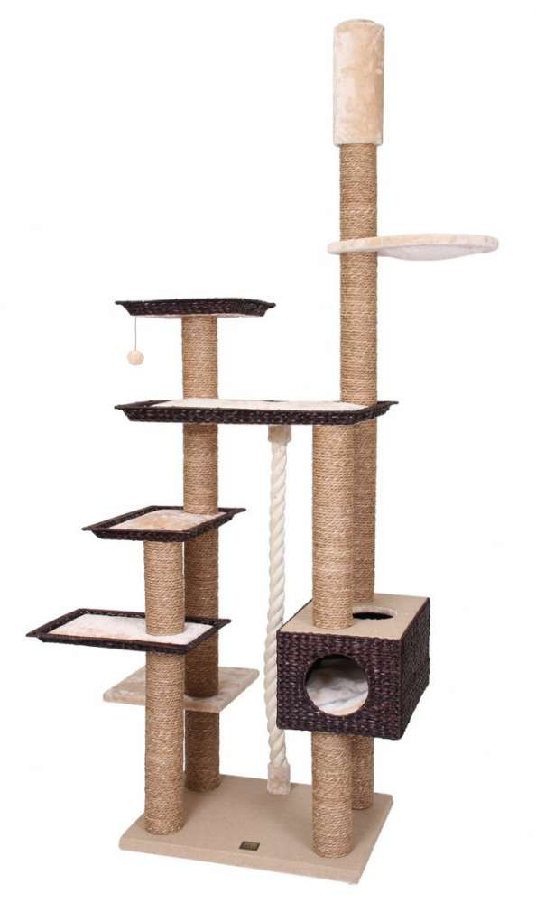 EBI Trend Cat-Tree Jamaica Brun clair 114x80/240-270 cm