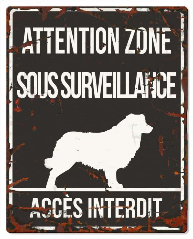 Europet-Bernina D&D Homecollection Plaque Attention Collie, Black  Attention au Chien, gris