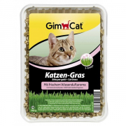 Cat Grass with Meadow Fragrance 150 g