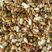 Dietary Parrot Feed 25 kg