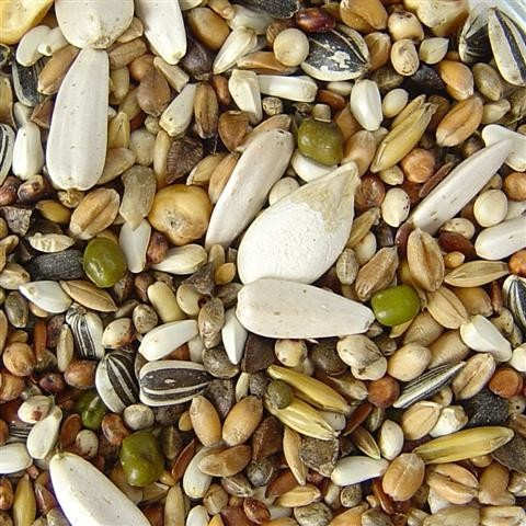 Parrot Food - Breeding Mix without Nuts by Rosenlöcher 25 kg buy online
