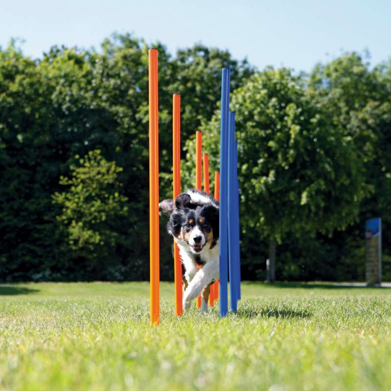 Trixie Dog Activity Agility Slalom  115×ø3 cm