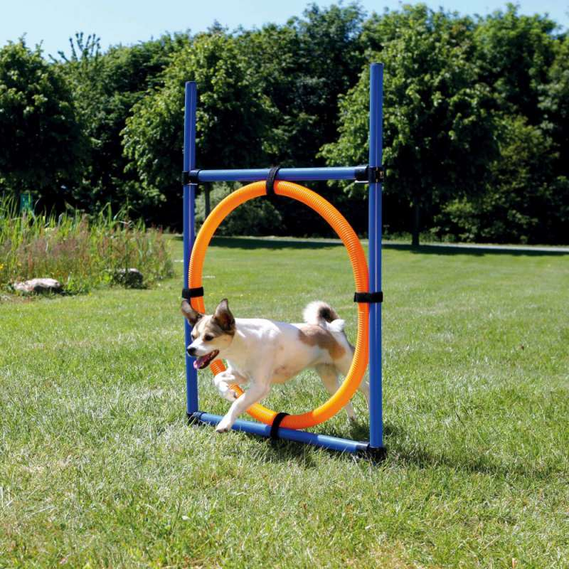 Trixie Dog Activity Aro para Agilidad ø3x115/ø65 cm
