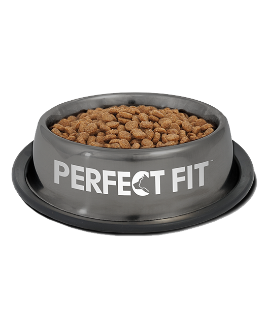 Perfect Fit Adult 1+ XS/S Poulet 1.4 kg