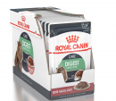 Royal Canin Feline Care Nutrition Multipack  Digest Sensitive Kastikkeessa 12x85 g