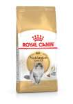 Royal Canin Feline Breed Nutrition Norwegische Waldkatze Adult 10 kg