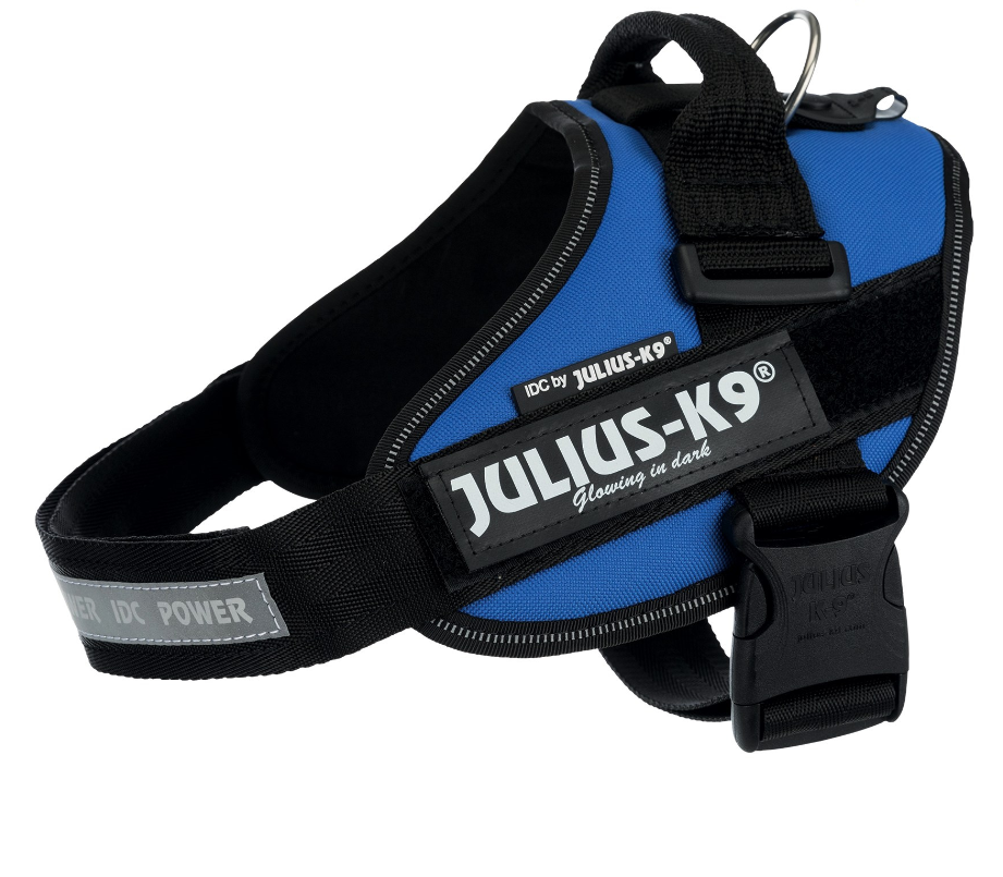 Julius K9 IDC Arnés Power Azul M-L
