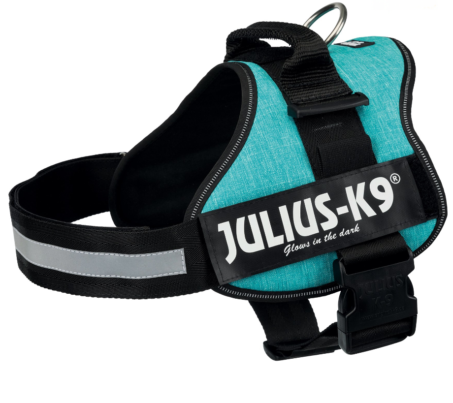 Julius K9 Powersele  Aqua L