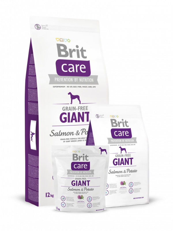 Brit Care Giant Adult Grain-free med Lax och Potatis 3 kg, 12 kg, 1 kg