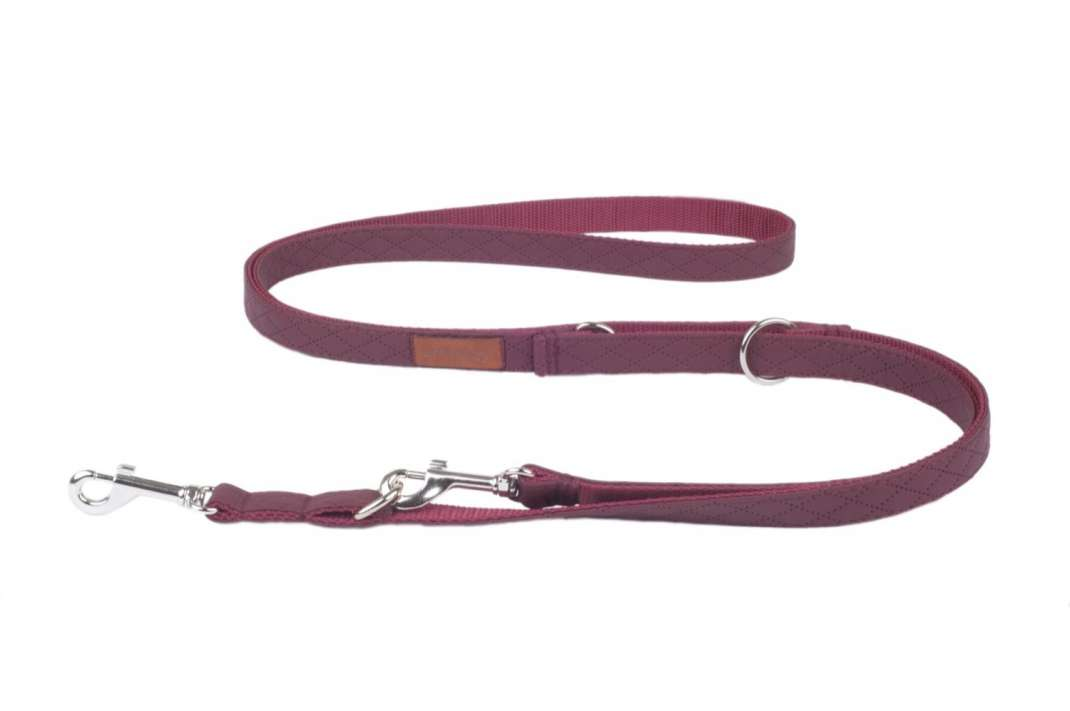 Amiplay Adjustable Leash 6 in 1 Cambridge  Wine red L order cheap