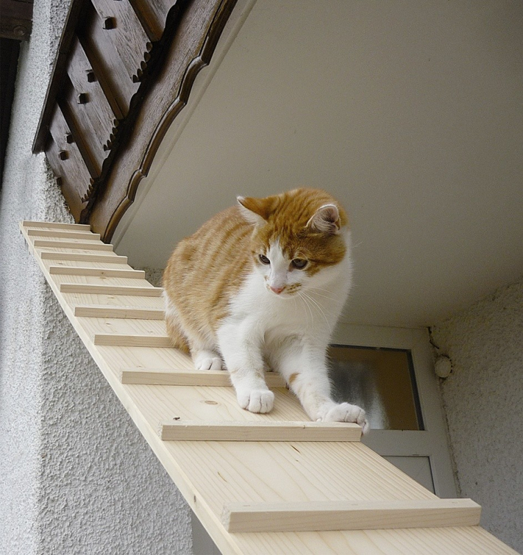 Elmato Cat Stairs with Joint  1 m Beige