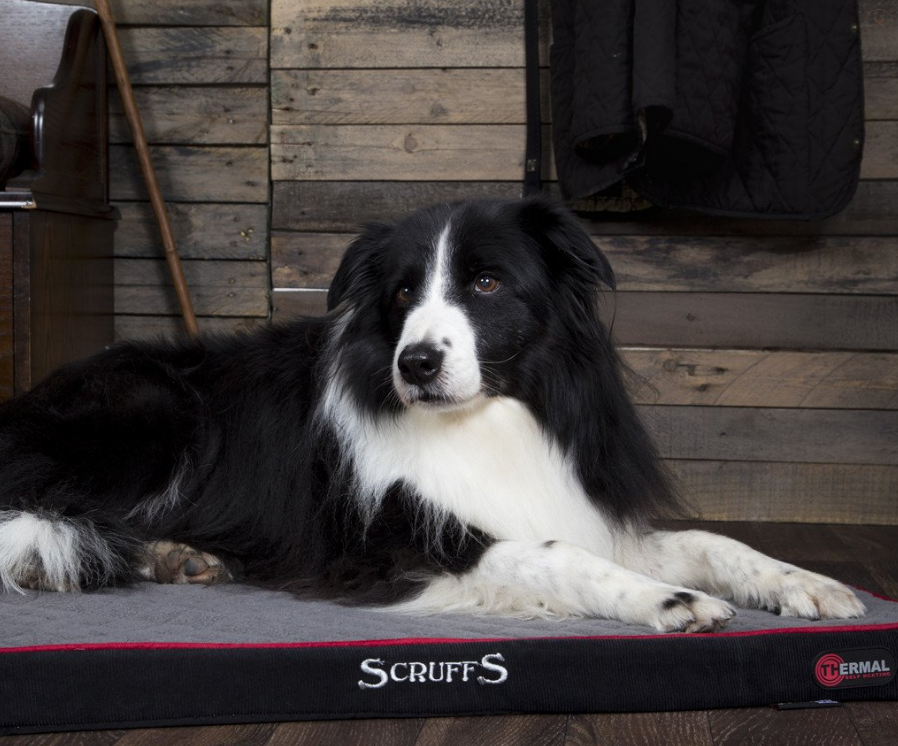 Scruffs Thermal Pet Mattress  Negro 82x58x5 cm