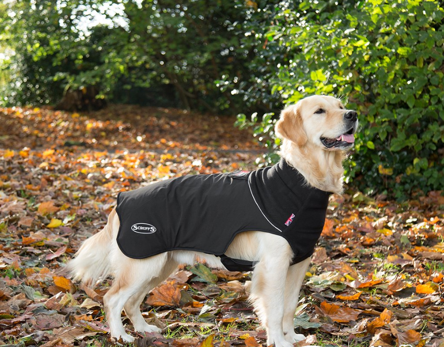 Scruffs Thermal Dog Coat EAN: 5060319936075 reviews