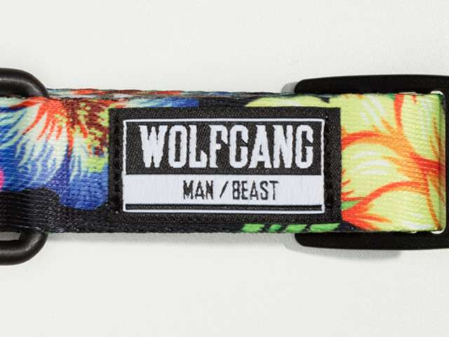 Wolfgang StreetLogic Laisse  S Multicolore