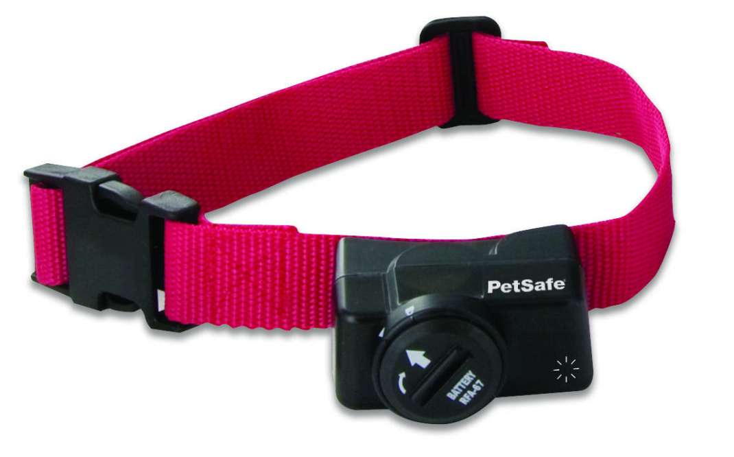 PetSafe Collare Ricevitore aggiuntivo Add-A-Dog per Sistema antifuga senza Fili Wireless Pet Containment 0729849107625 opinioni