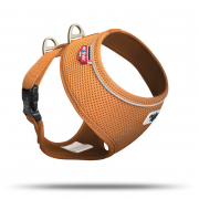 Geschirr Basic Air-Mesh Orange