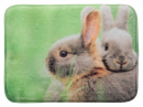 Lying Mat for Rabbits 39x29 cm