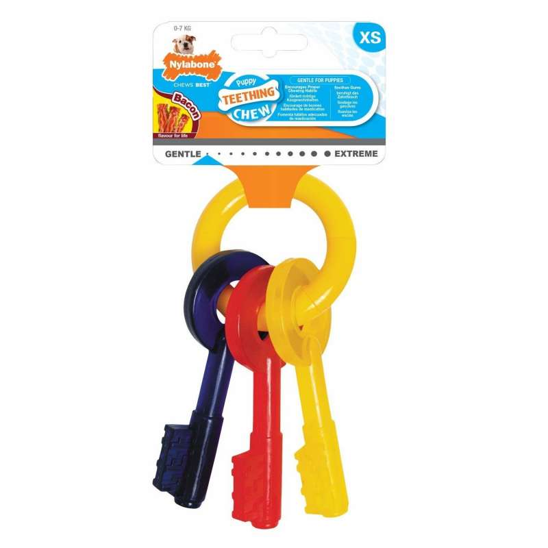 Nylabone Puppy Teething Keys 0018214814856