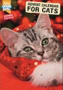 Armitage Pet Care Good Girl Cat Advent Calendar