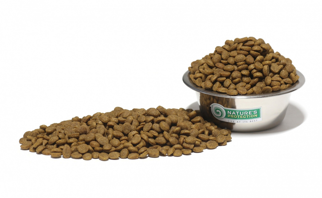 Clinoptilolite In Dog Food