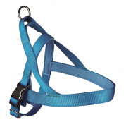 Experience Norwegian Harness Light blue