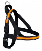 USB Flash Norwegian Harness M