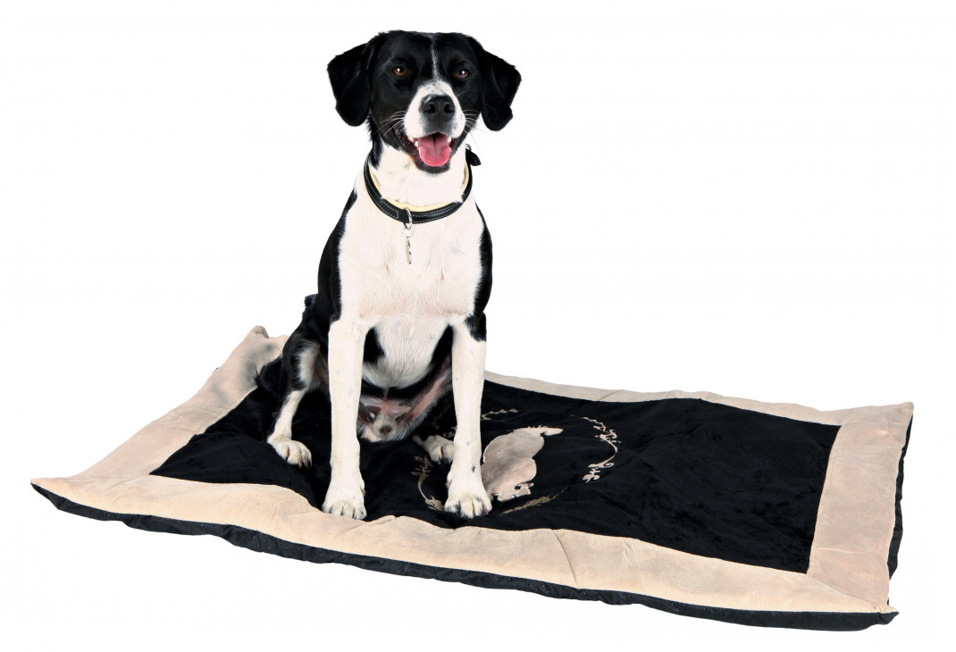 Trixie King of Dogs Blanket