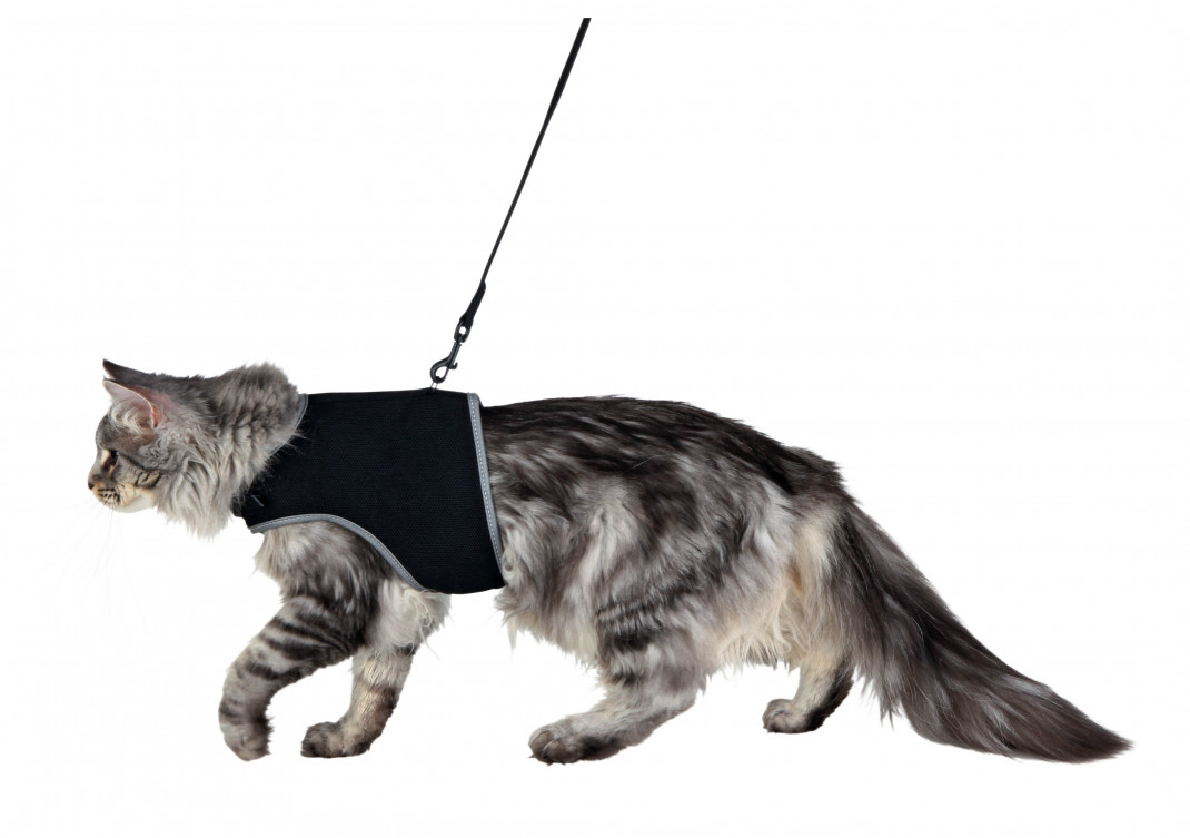 Trixie Cat Soft Harness with Leash  36-54 cm