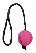 Trixie Assortment Sport Balls on a Rope, Foam Rubber, Floatable 24 St