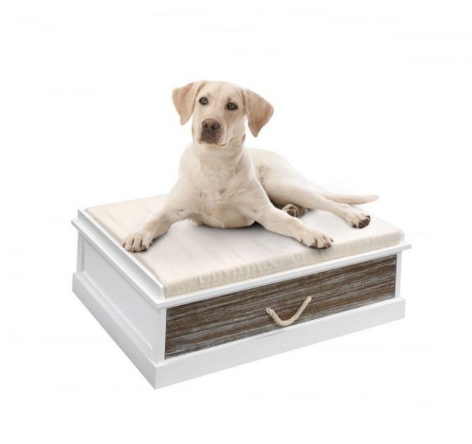 Europet-Bernina Heartfelt Lounge Darwin 100 100x70x30 cm