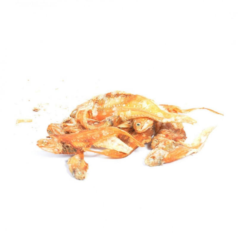Oceanz Anchovy from DUVO+ 75 g, 50 g, 100 g buy online