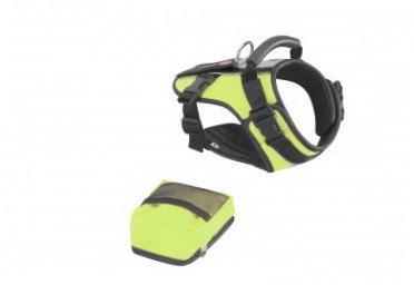 Europet-Bernina Sport-Harness Crazy Paws Hellgrün S