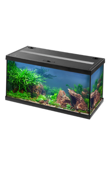 Eheim MP-Aquastar-Set LED 54 L Noir Noir